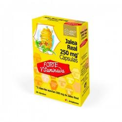 Arko Real Jalea Real Vitaminada - 20 ampollas